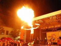 Feuershow-aus-Zwickau-Sachsen-06